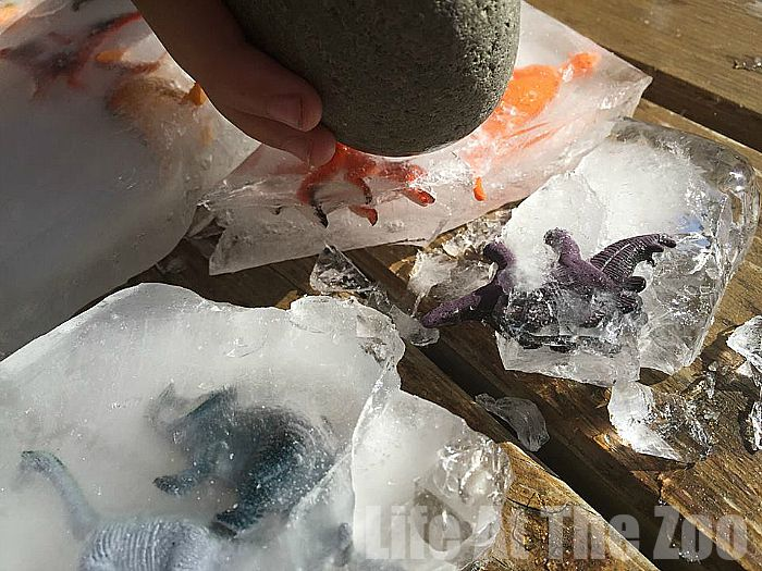 Cool down with some fun Dino Ice Excavation - Summer Fun for Kids