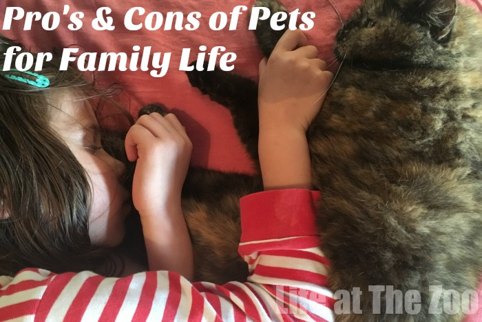 pros and cons of pets for family life